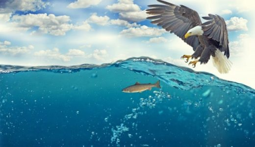 釣りガールのマストアイテム!フィッシュトング(魚つかみ)は釣果写真の映えアイテム